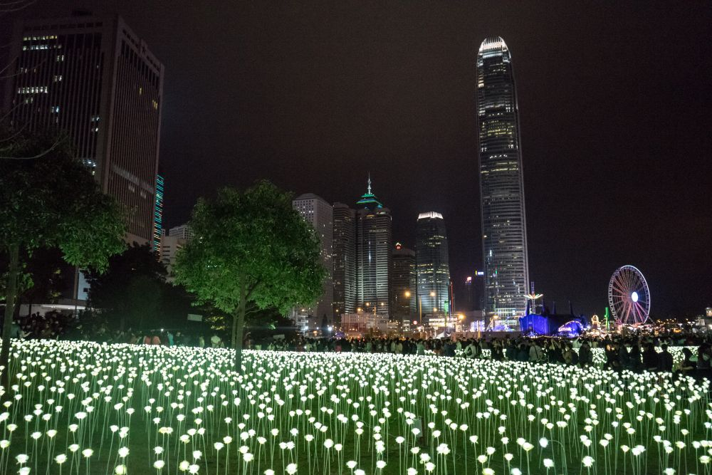 Hong Kong Stunning LED Flower installation